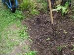potato soil harvest from The Bog