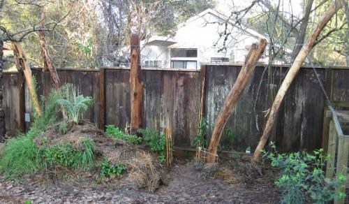 Trellis habitat, House Finch Hideaway.
