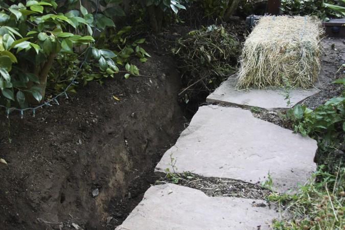 071509 LTH -- soil harvest