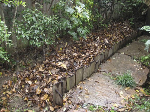 Leaf Trench Highway with a fresh layer of tulip magnolia leaves.