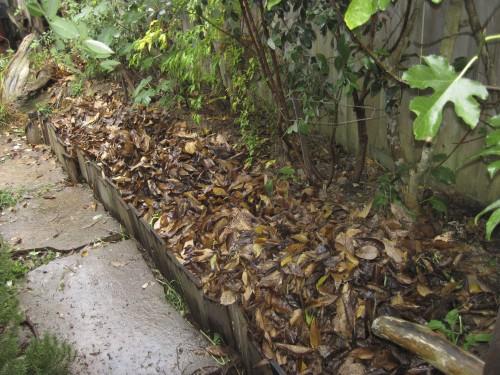 Leaf Trench Highway extends along the back corner of our yard to Salamander Resort (left).
