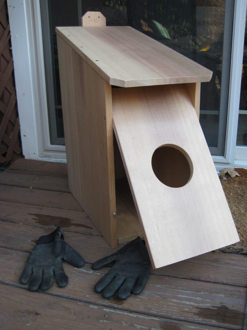 Owl Box Pictures To Pin On Pinterest ThePinsta