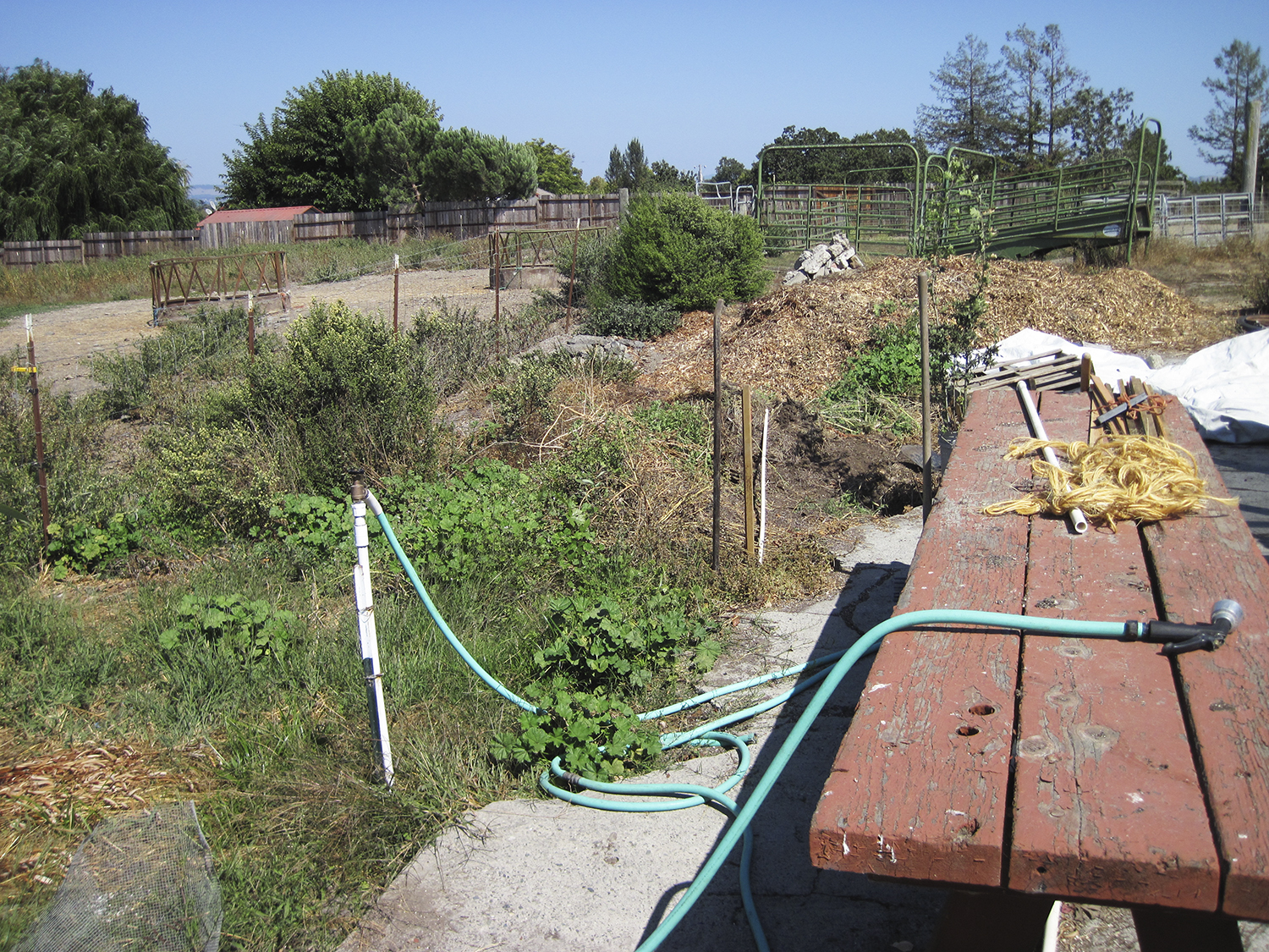 The BEFORE -- area behind the Laguna Foundation's native plant nursery before installation of Compost Cricket Corral, which will consolidate the compost pile and provide wildlife habitat.