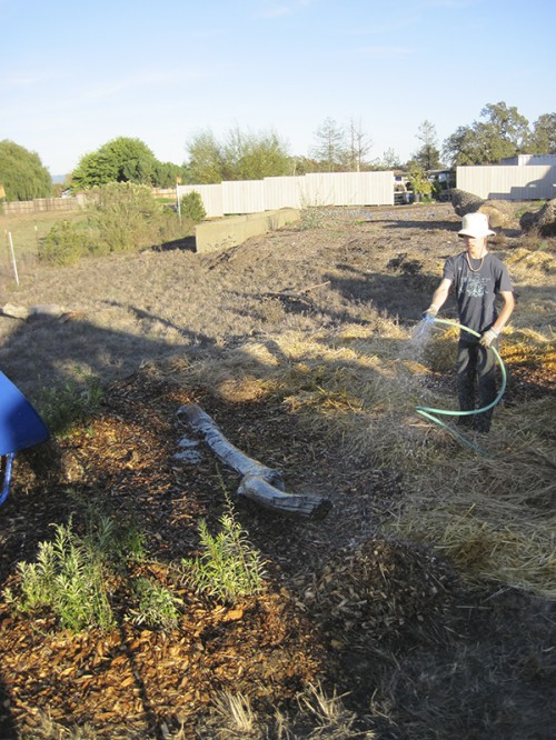 watering the completed wildlife habitat