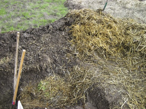 straw to walk on and hold soil/mud pile together