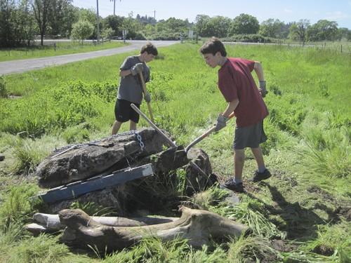 Dig a hole, make a mound.